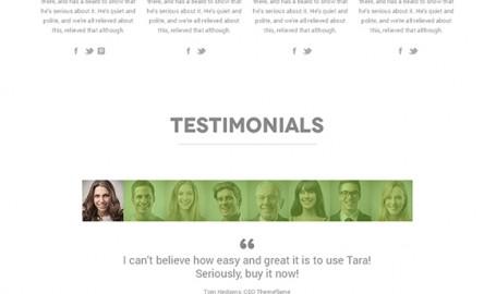 Tara - 多功能OnePage网页模板