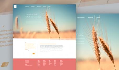 Organic - 免费网页PSD模板