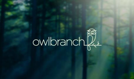 Owlbranch - 标志设计