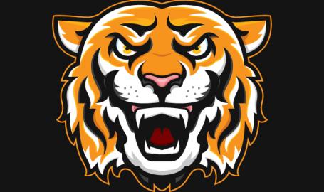 Tiger - 矢量图形设计