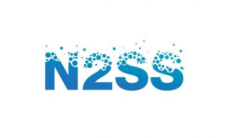 N2SS - 标志设计