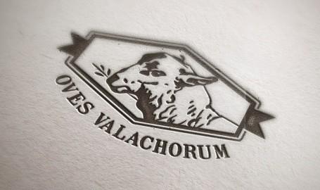 Oves Valachorum - 标志设计