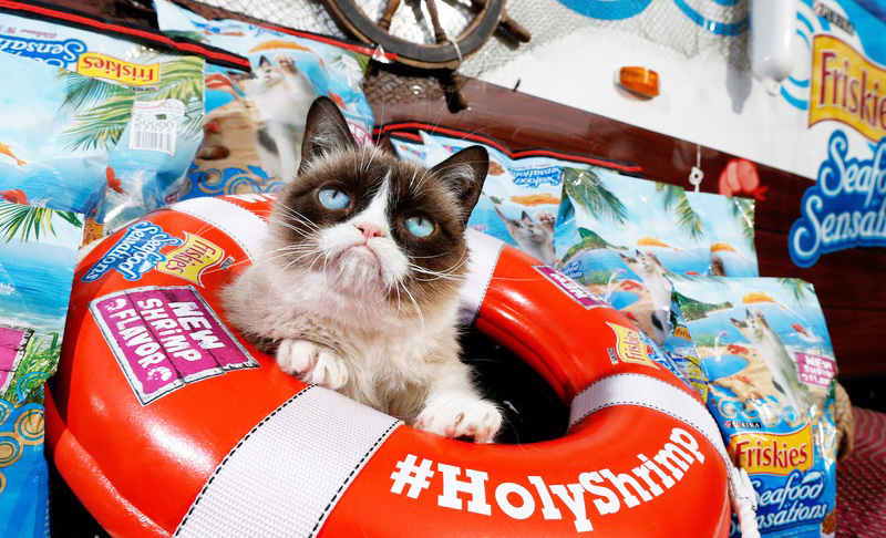 会展设计:Grumpy Cat​ on the Wrecking Ball Art for Mashable at SXSW - 任刚 · Ren Gang 世界设计 · 设计世界