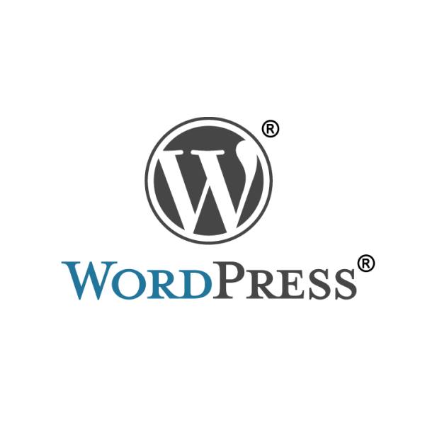 WordPress Post Excerpt – 代码获取WordPress的文章摘要