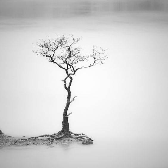 印度尼西亚摄影师 Hengki Koentjoro 极简主义摄影作品