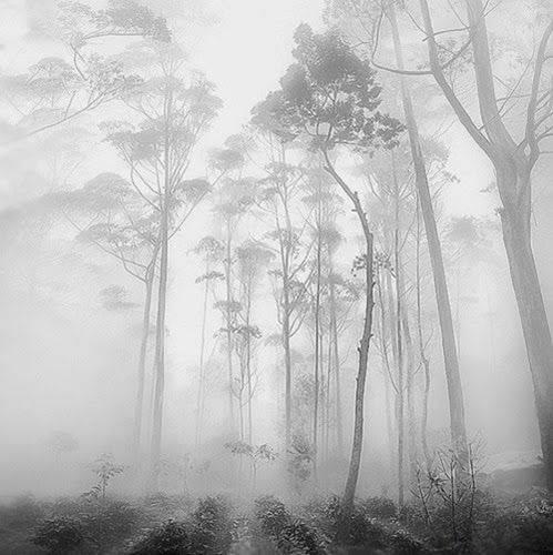 印度尼西亚摄影师 Hengki Koentjoro 极简主义摄影作品 - 任刚 · Ren Gang 世界设计 · 设计世界